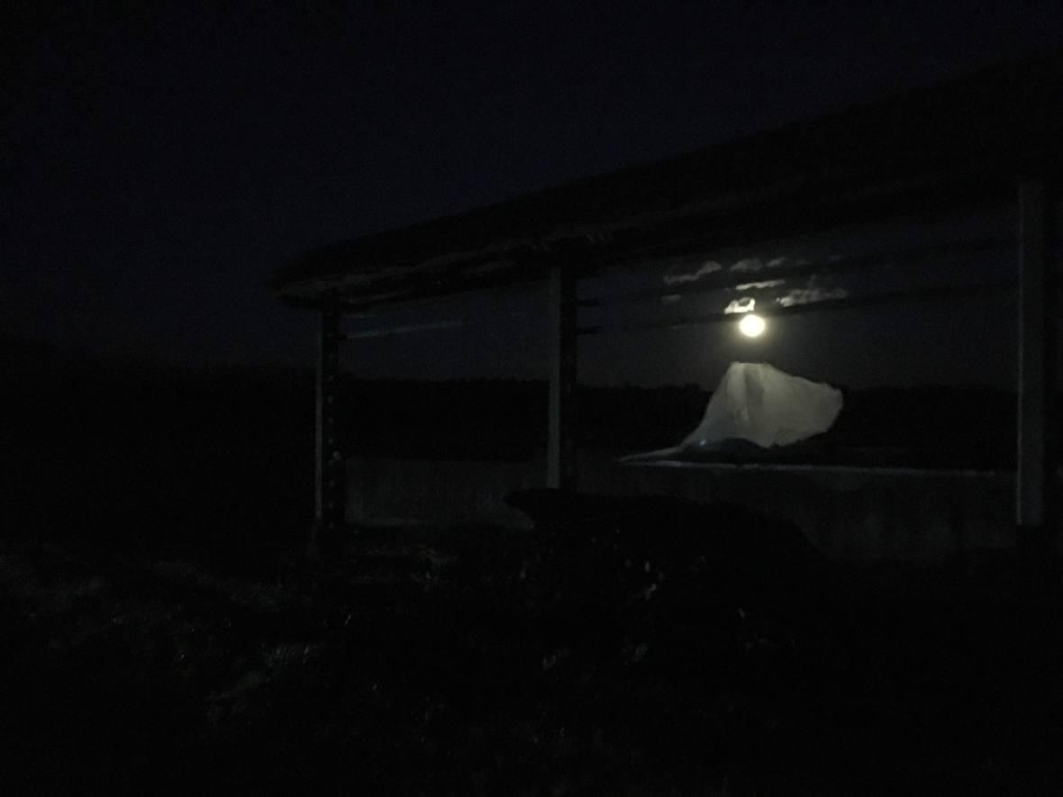 fuldmåneSkofjaLoka